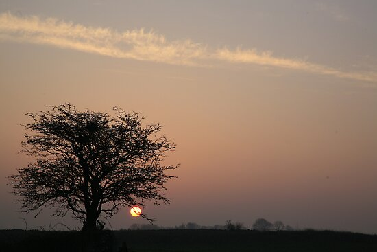 LOW SUN by Sean Farragher
