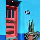 Tucson's Got Color by Barbara Manis