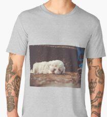 Sleepy Puppy Men's Premium T-Shirt