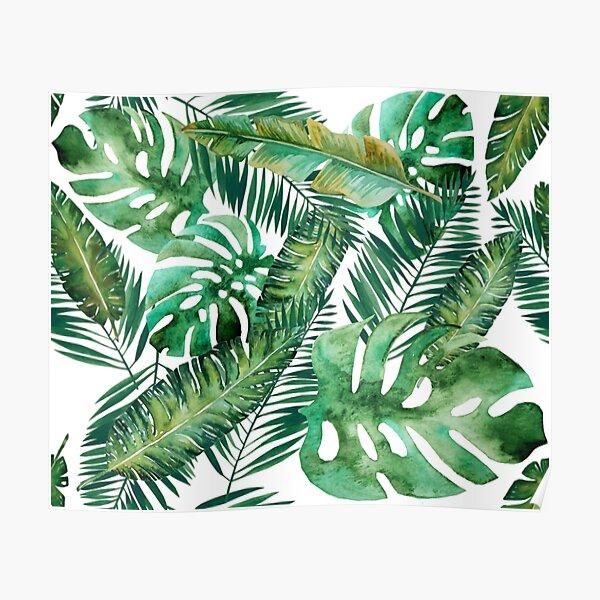Monstera Banana Palm Leaf Poster