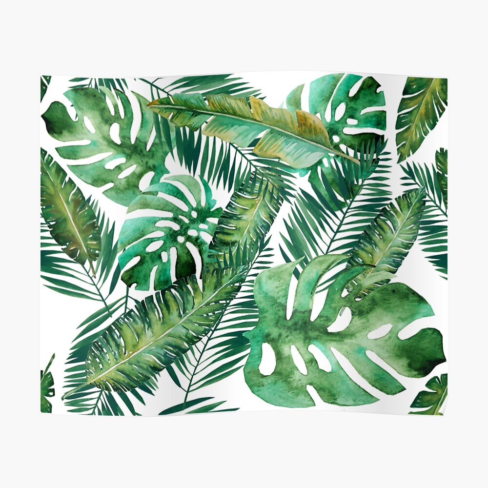 Monstera Banana Palm Leaf Poster