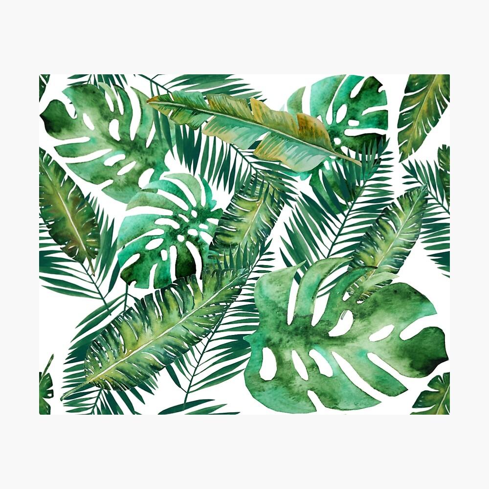 Monstera Bananen Palmblatt Fotodruck