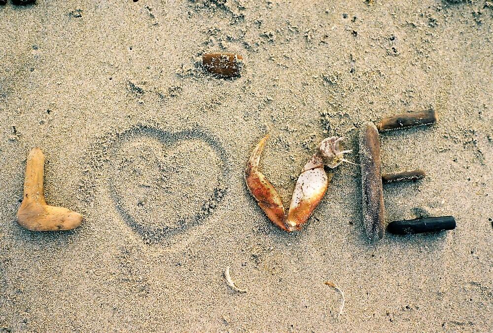 Love by Caleb Wells