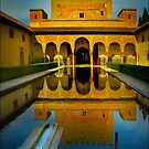 Alhambra, Granada, Pooling by Ted Byrne