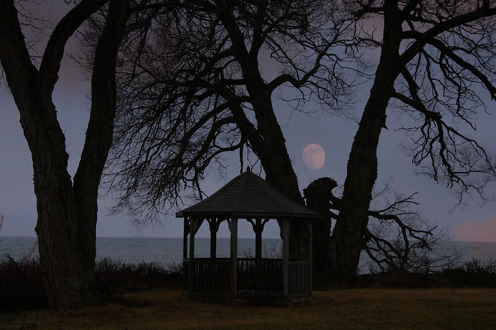 Gazebo With A View by dollfacesca