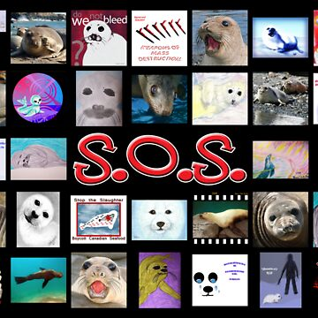 Save Our Seals, Part I by Voices4Animals
