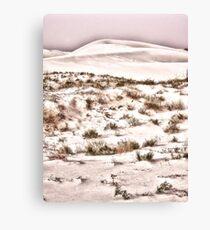 Scrub Brush Canvas Print