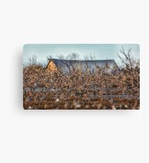 A Few Birds Flying in Front of an Old Barn Canvas Print