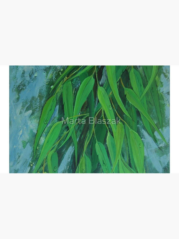 Fresh Eucalyptus by mbjust