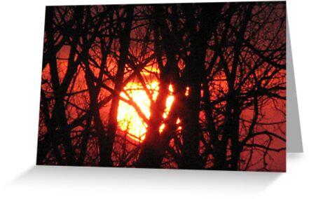 Setting Sun by gypsykatz