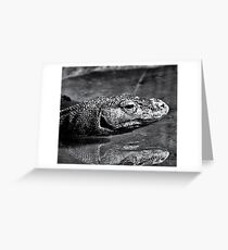 Komodo Greeting Card