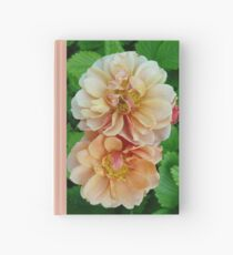 Peach Roses Hardcover Journal