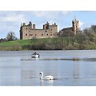 Linlithgow Loch and Palace , Scotland by David Rankin