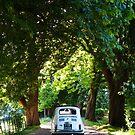 Italia Auto by Flo Smith