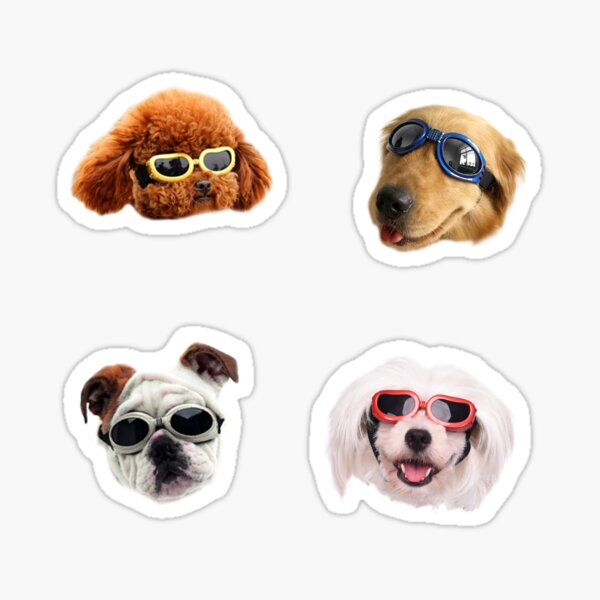 Doggo Stickers: Sunglasses #1 Sticker