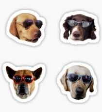 Doggo Stickers: Sunglasses #2 Sticker