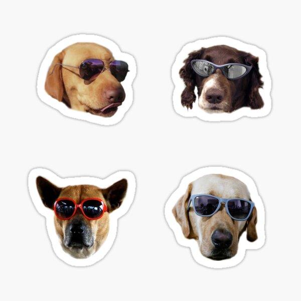 Doggo Stickers: Gafas de sol # 2 Pegatina