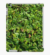Texture of plant iPad Case/Skin