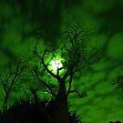 GREEN BAB MOON SKY BLANKET by Dors