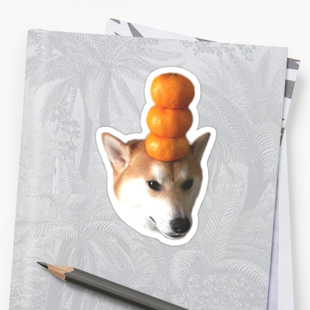 Pegatinas Doggo: Chico Naranja Pegatina