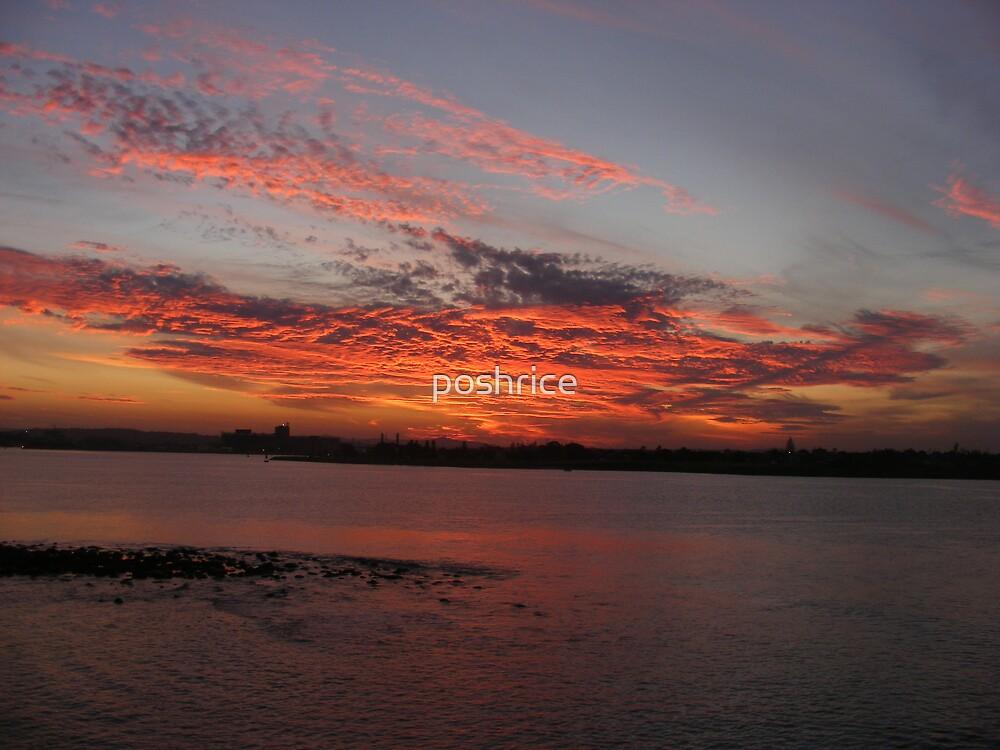 Sunset at Nobby's Beach Newcastle by poshrice