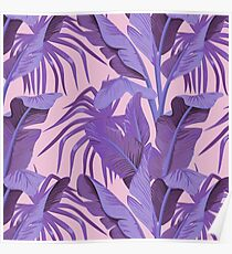 Tropical '17 - Starling [Banana Leaves] Poster