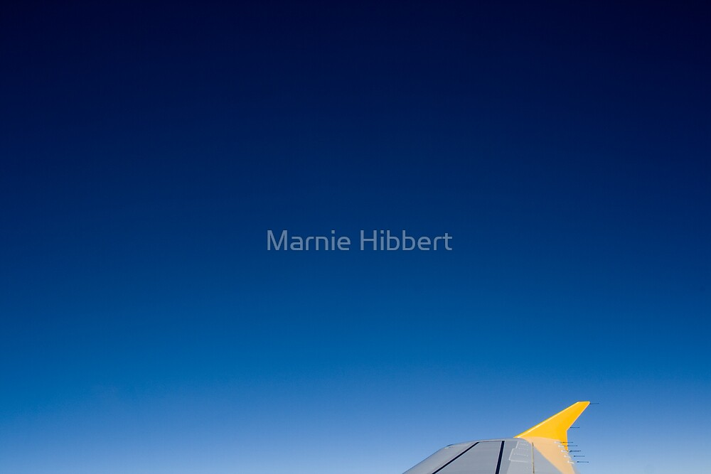 Perfect flight by Marnie Hibbert