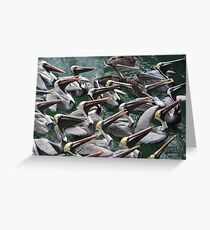 Hypnotized Pelicans Greeting Card