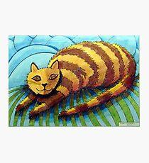 413 - STRIPEY CAT - DAVE EDWARDS - COLOURED PENCILS - 2014 Photographic Print