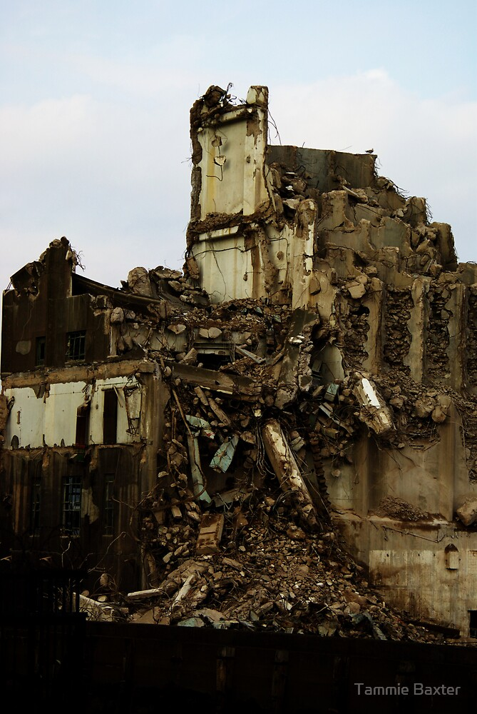 Demolition of an industry 1 by Tammie Baxter