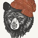 zissou the bear by lauragraves