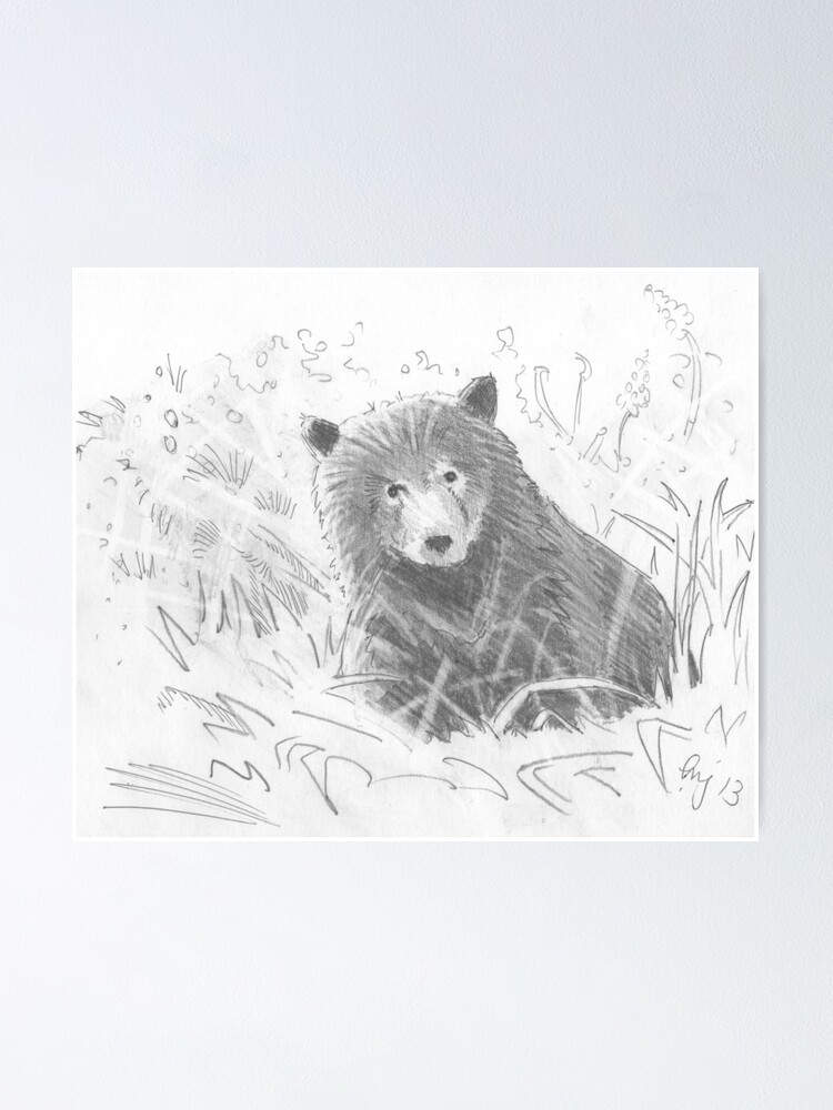 Promo Poster Grizzly Bear 11 x 17 # Painted