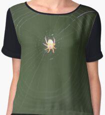 Spinne im Spinnennetz Makroaufnahme Women's Chiffon Top