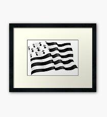 Breton flag Framed Print