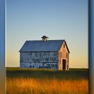 Dusk on the Prairie by Sheryl Gerhard