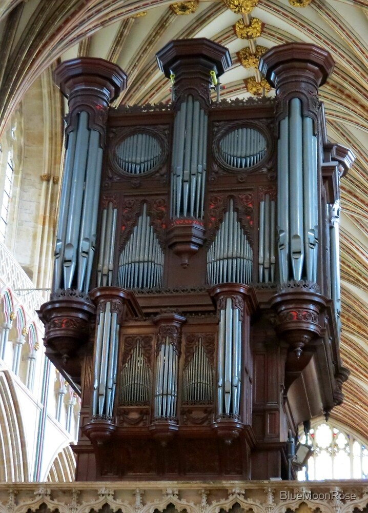 Voice of Thunder - Exeter Cathedral Organ Pipes by BlueMoonRose