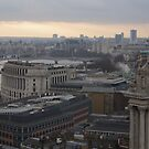 London Skyline in WInter - St.Paul's to Westminster by seymourpics