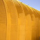Linear Functions - Metal Building in Yellow Version by Buckwhite