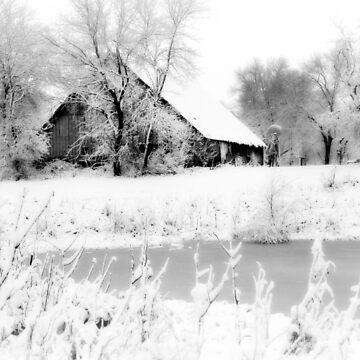 White Christmas 2 by BarnArtandMore