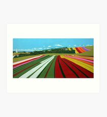 Tulip Farm, Table Cape Art Print