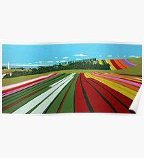 Tulip Farm, Table Cape Poster