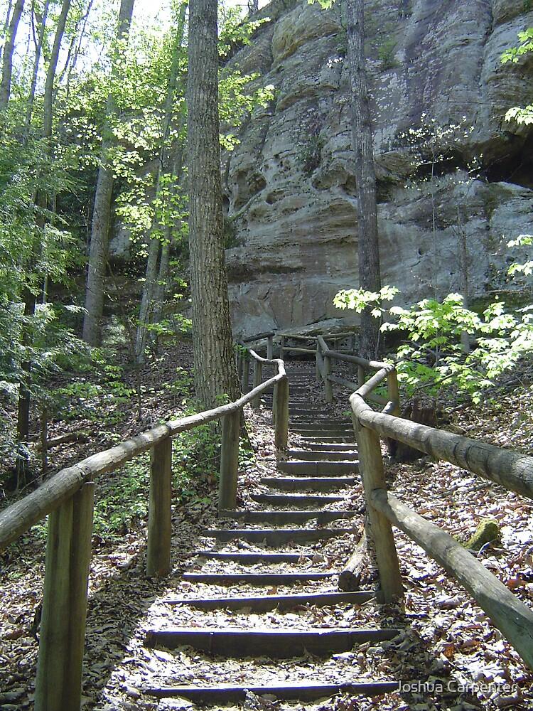 The Path Less Taken by Joshua Carpenter