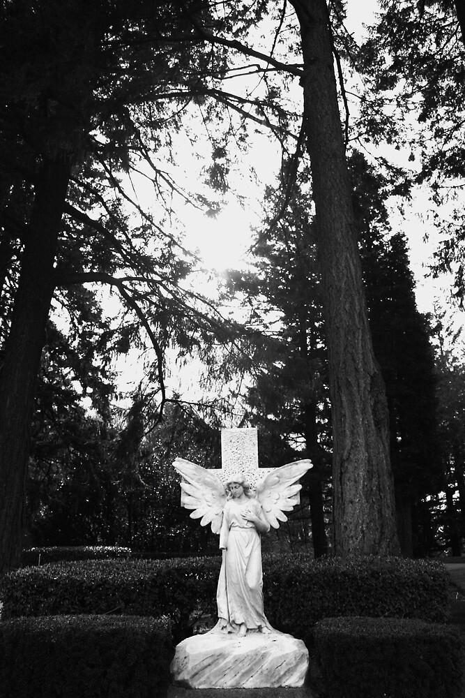 Cemetary Angel by heatherranae