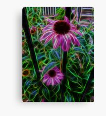 Beautiful is the Beauty of a Purple Cone Flower Canvas Print