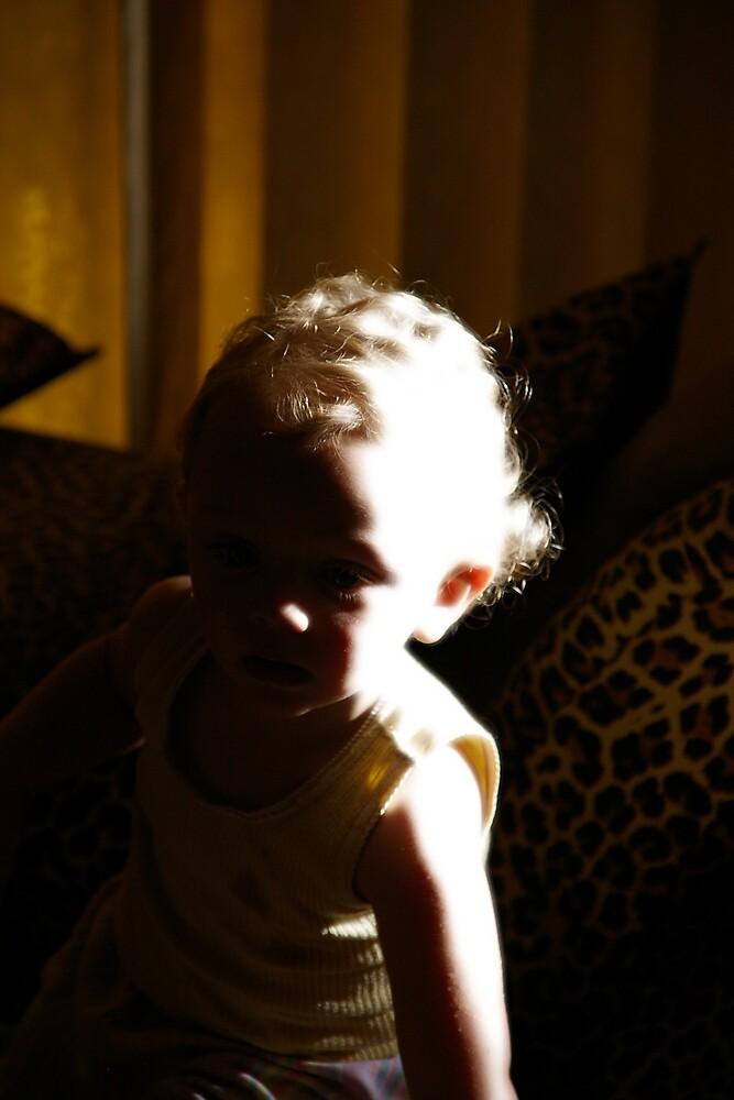 Hiding in the shadows by Deidre Cripwell
