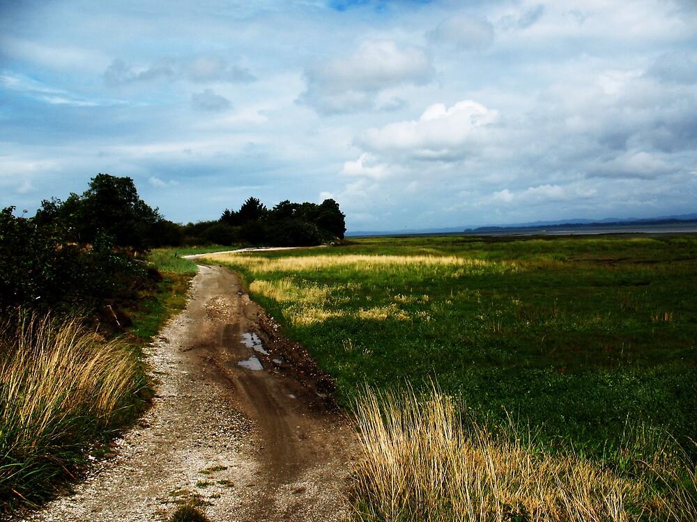 Meditative Wandering by jeanagnes
