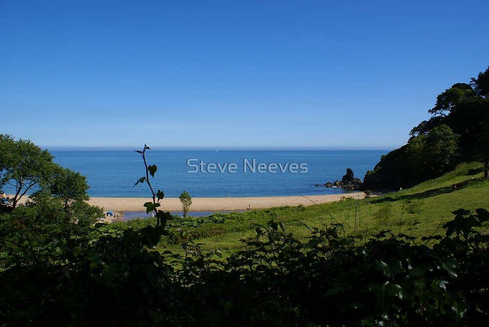 green and pleasant land  by Steve Neeves