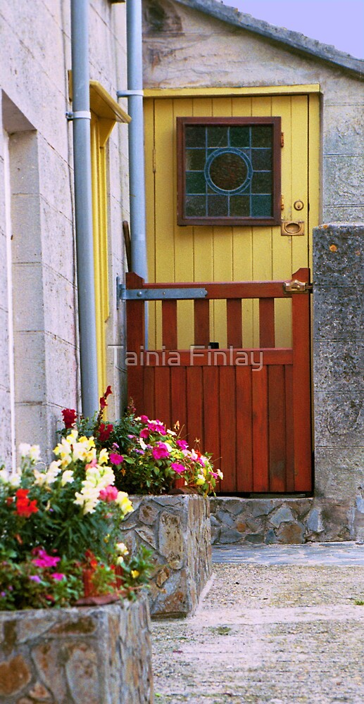 Cottage Door by Tainia Finlay