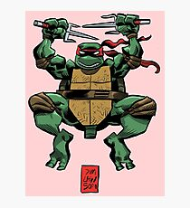 Raphael is Cool but Rude Photographic Print