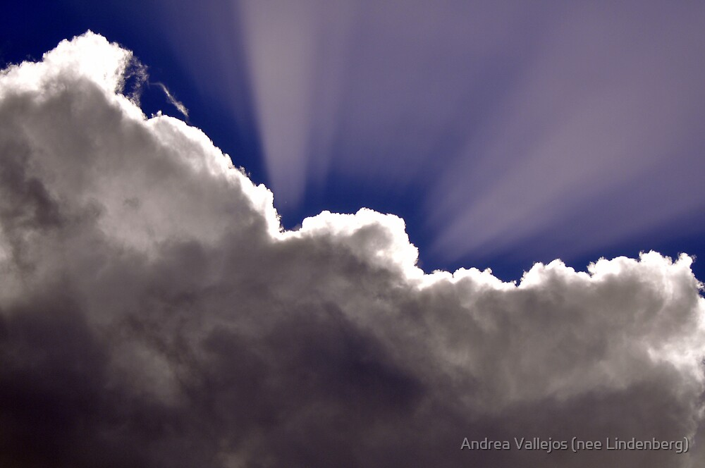 The Silver Lining by Andrea Vallejos (nee Lindenberg)